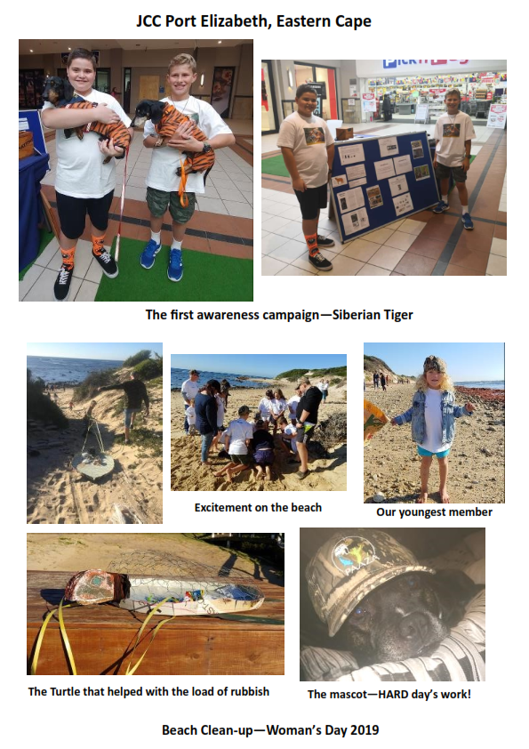 Collage Tiger Beach Clean Up 2019 001